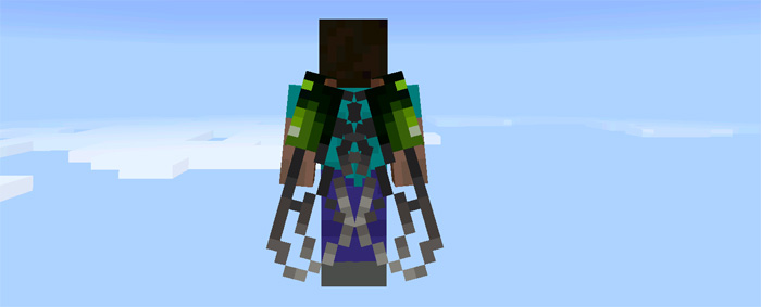 custom-elytra-wings-11.jpg