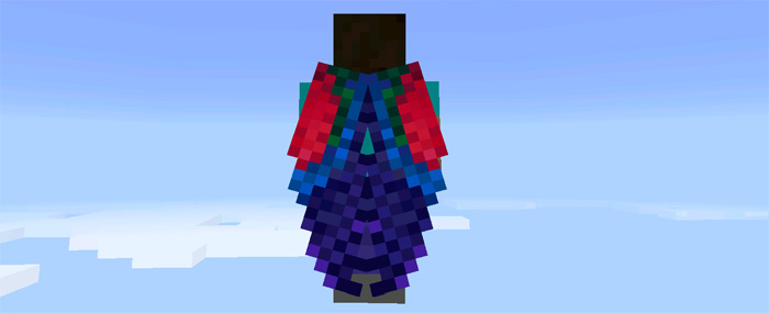 custom-elytra-wings-12.jpg