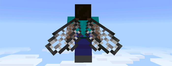 custom-elytra-wings-2.jpg