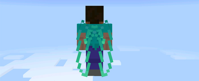 custom-elytra-wings-3.jpg