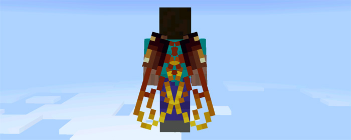 custom-elytra-wings-4.jpg