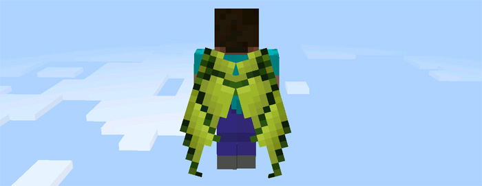 custom-elytra-wings-5.jpg