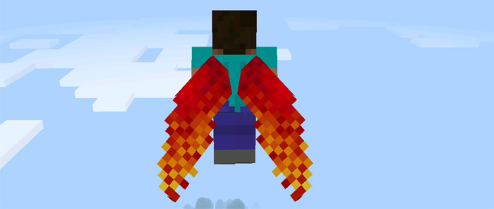 custom-elytra-wings-6.jpg