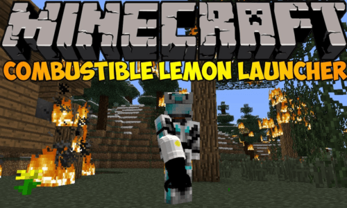 http://img.mod-minecraft.net/Mods/Combustible.png