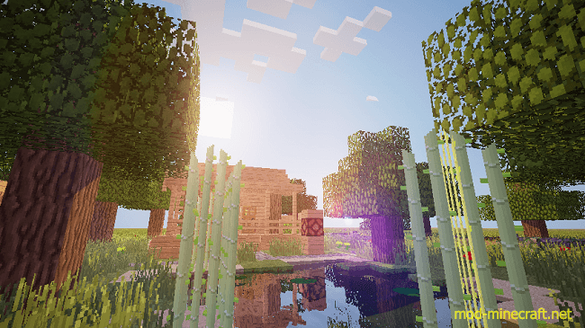 http://img.mod-minecraft.net/Mods/Crapdeshoes-real-shade-mod-4.png