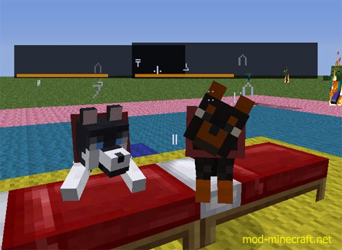 how to use a nametag in minecraft on a dog