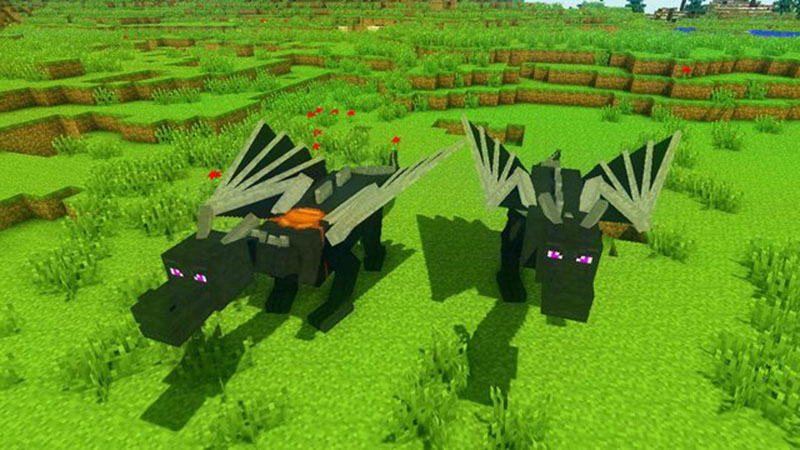 http://img.mod-minecraft.net/Mods/Dragon-Mounts-Mod-3.jpg