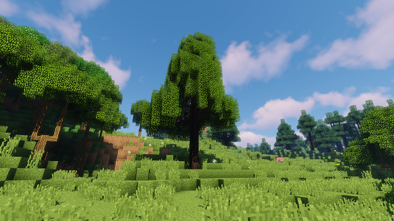 Dynamic Trees Thaumcraft Compat Mod Greatwood