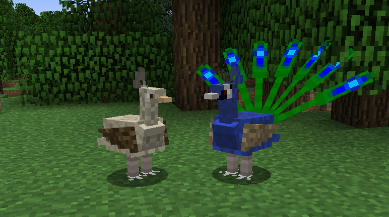 Exotic-Birds-Mod-13.png