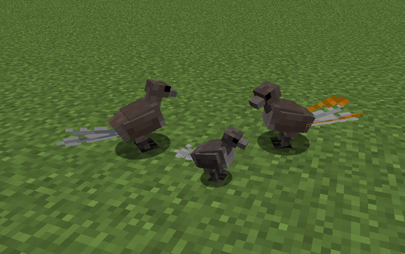 Exotic-Birds-Mod-8.png