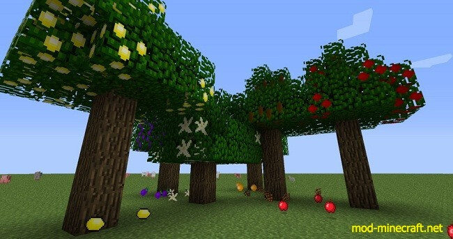 http://img.mod-minecraft.net/Mods/Jaffas-and-More-Mod-9.jpg