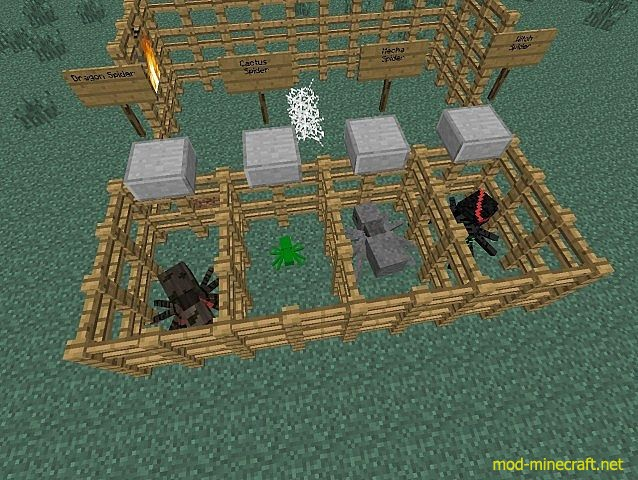 http://img.mod-minecraft.net/Mods/Much-More-Spiders-Mod-3.jpg