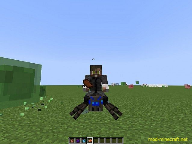 http://img.mod-minecraft.net/Mods/Much-More-Spiders-Mod-7.jpg