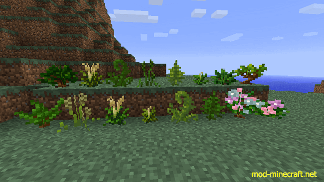 http://img.mod-minecraft.net/Mods/Temperate-Plants-Mod-1.png