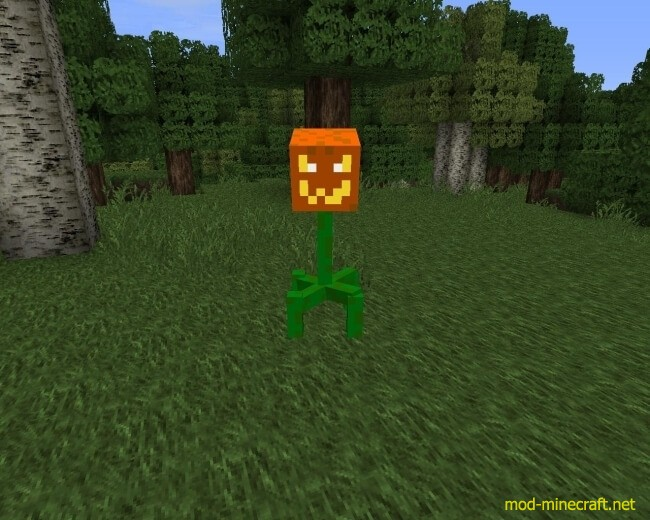 http://img.mod-minecraft.net/Mods/Witches-and-More-Mod-4.jpg