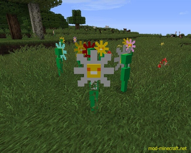 http://img.mod-minecraft.net/Mods/Witches-and-More-Mod-5.jpg
