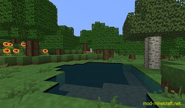 http://img.mod-minecraft.net/Resource-Pack/FilleCraft1.jpg