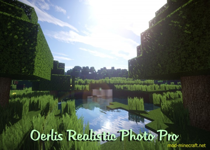 Oerlis Realistic X256 Resource Pack 1 8 2 1 8 1 7 10