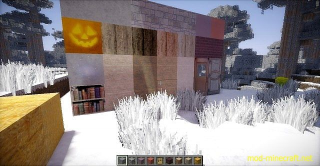 http://img.mod-minecraft.net/Resource-Pack/Outdoorsy-realism-x-mas-3.jpg