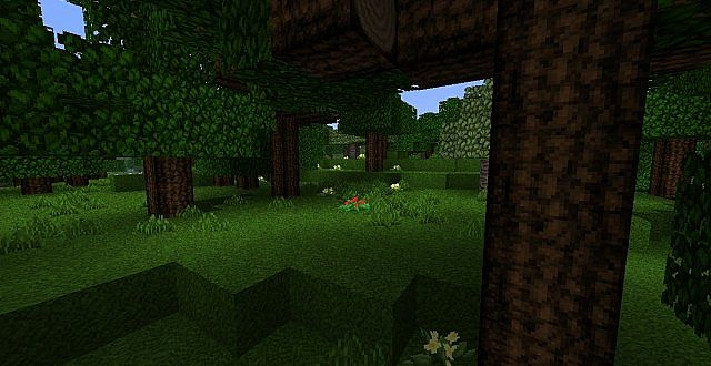 http://img.mod-minecraft.net/Resource-Pack/The-Arestians-Dawn-RPG-1.jpg