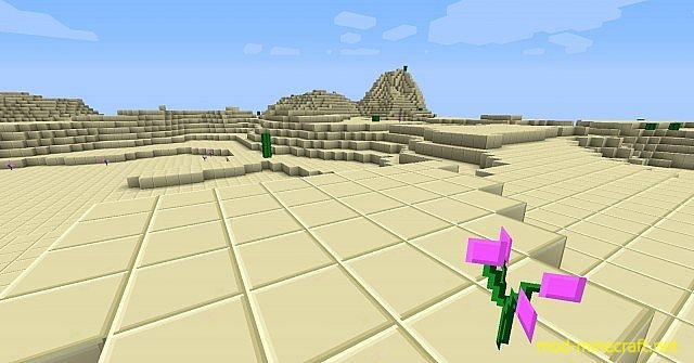 http://img.mod-minecraft.net/Resource-Pack/zorocks-resource-pack7.jpg