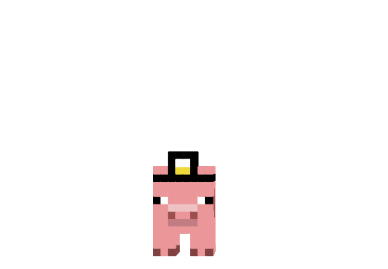 http://img.mod-minecraft.net/Skin/Doctor-pig-skin.png