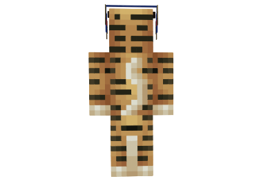 http://img.mod-minecraft.net/Skin/Tiger-skin-1.png