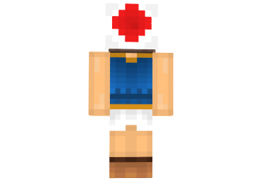 http://img.mod-minecraft.net/Skin/Toad-girl-skin-1.png